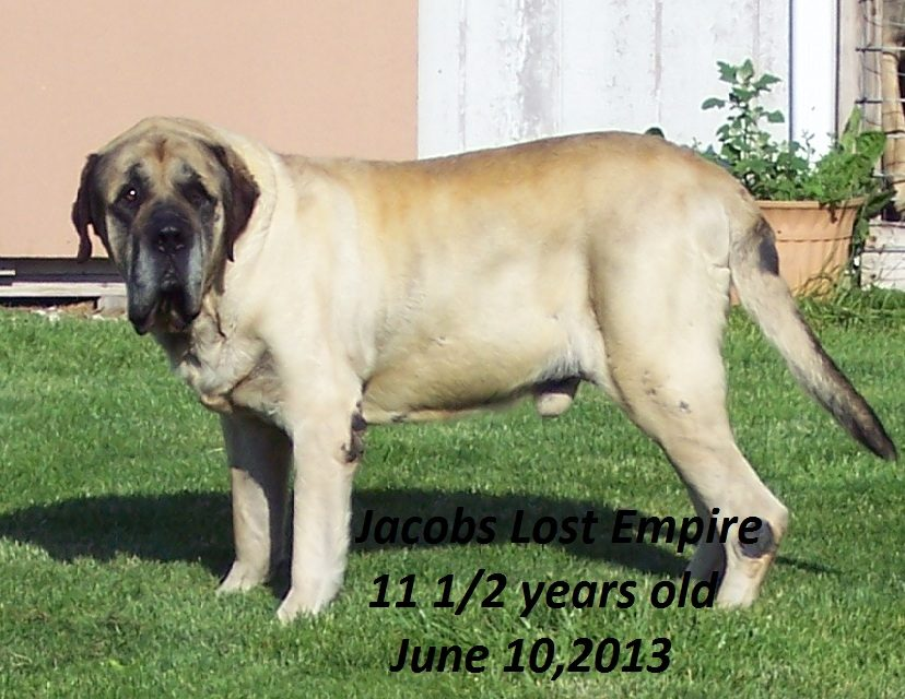 Jake-2013- 135.JPG
